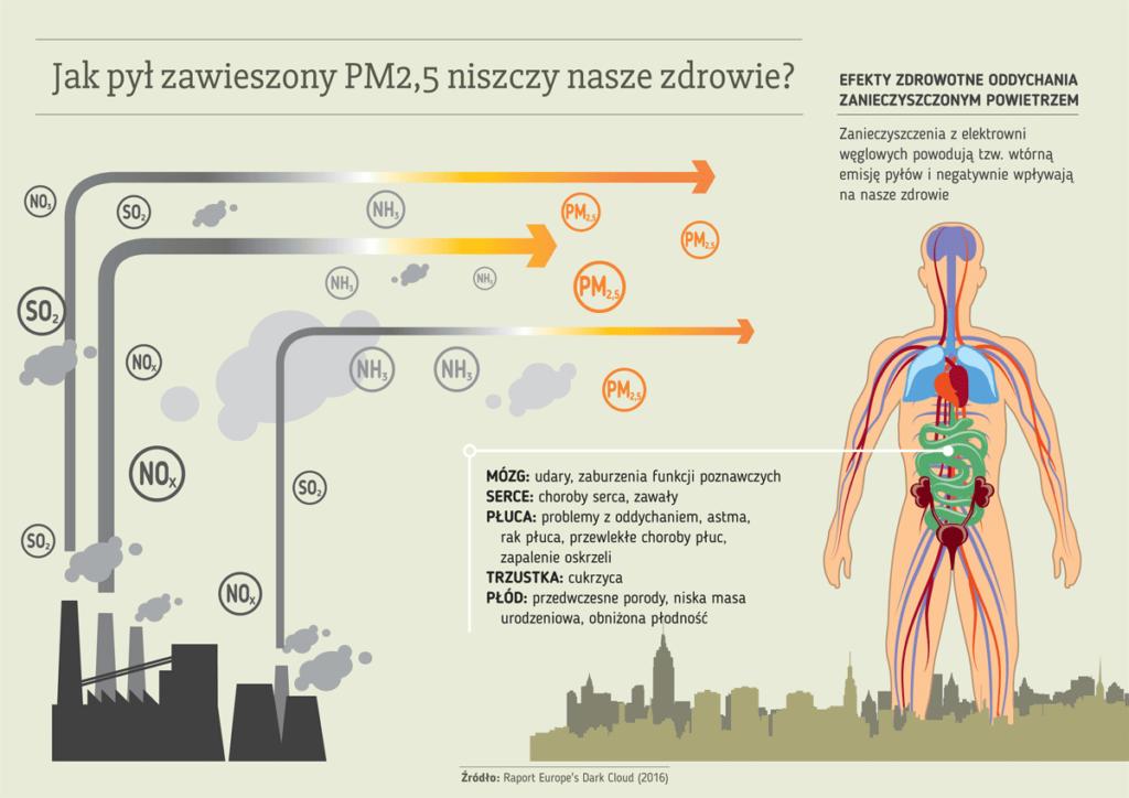 infografika_raport-2