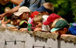 kids-4-1544915-1599x1020